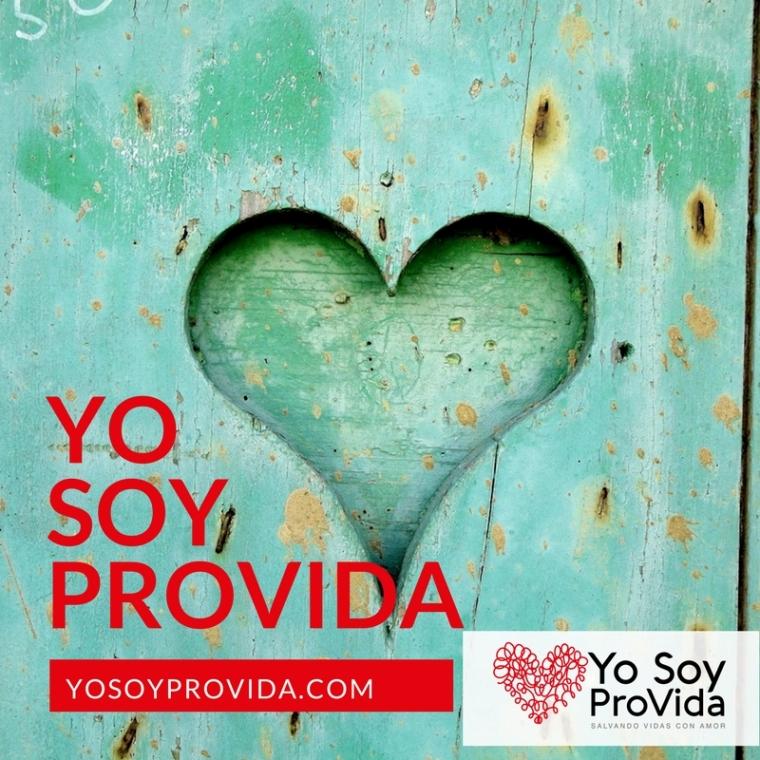 yosoyprovida-posts-5